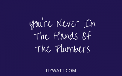 You're Never In The Hands Of The Plumbers
