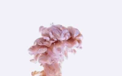 The Triune Brain: Why We Think, Feel And Do The Way We Do